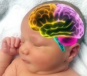 Asi Mencerdaskan Otak Anak Sekaligus Cegah Kanker